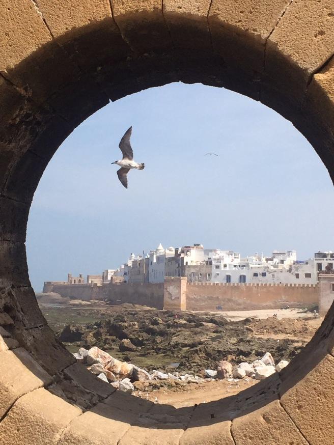 Morocco 2016 420